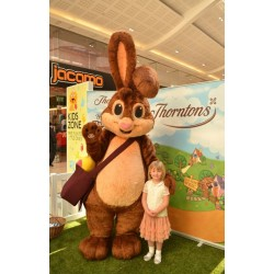 High Quality Bunny Rabbit Mascot Costume Free Shipping