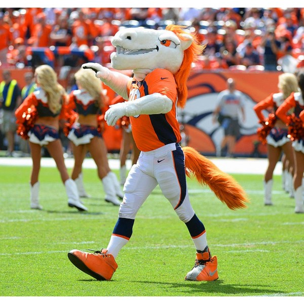 Mustang Horse Broncos Mascot Costume