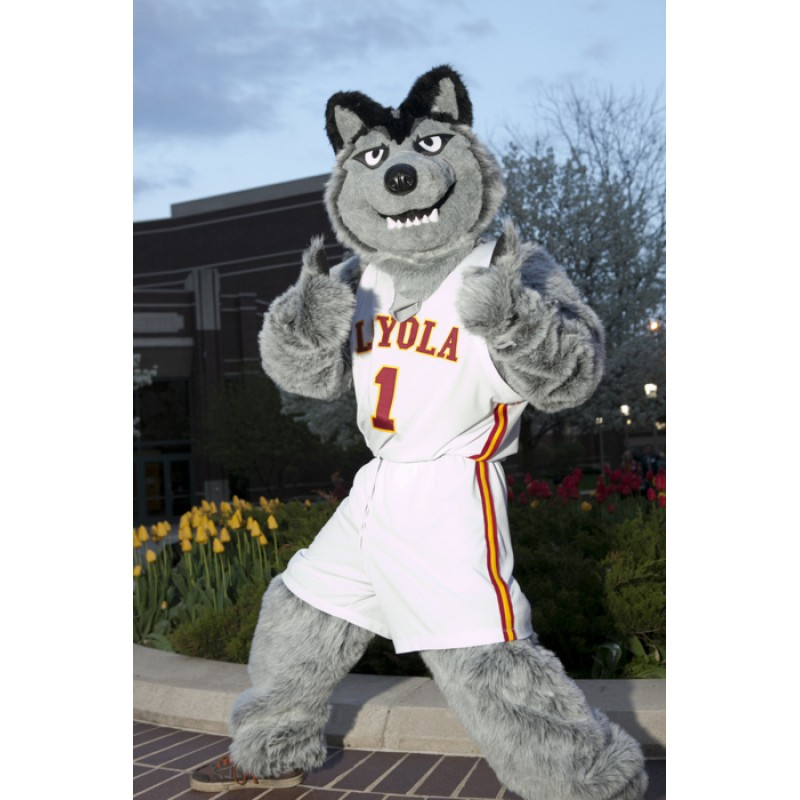 Gey Wolf Sport Football Team Mascot Costumes Free Shipping