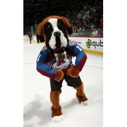 Professional Colorado Avalanches Mascot Costumes Free Shipping