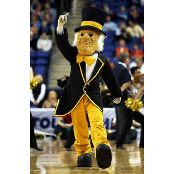 Professional Wake Forest University Demon Deacon Black and Yellow College Mascot Costume