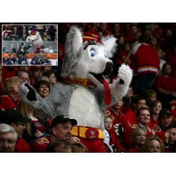 Calgary Flames mascot Harvey the Hound 61CT4123 inset Craig MacTavish