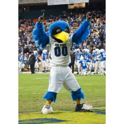 Professional Air Force Mascot The Bird Mascot Costumes Free Shipping