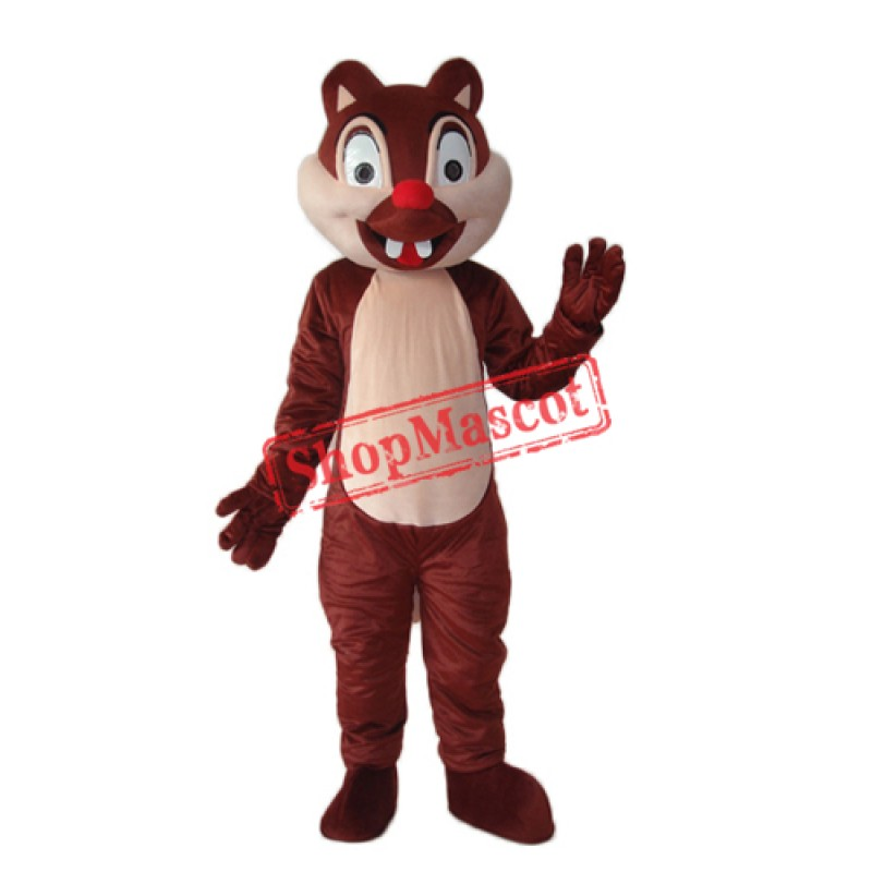 Little Squirrel Mascot Adult Costume Free Shipping