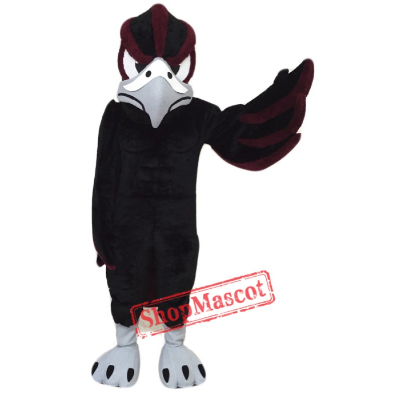 School Falcon Mascot Costume