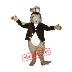 High Quality Brown Rabbit Mascot Costume