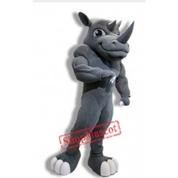 Power Rhino Mascot Costume