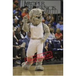 College Bulldog Mascot Costume
