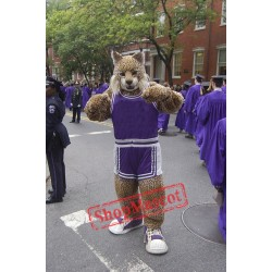School Bobcat Mascot Costume
