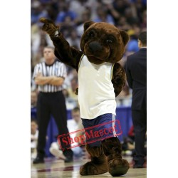 College Basketball Bear Mascot Costume