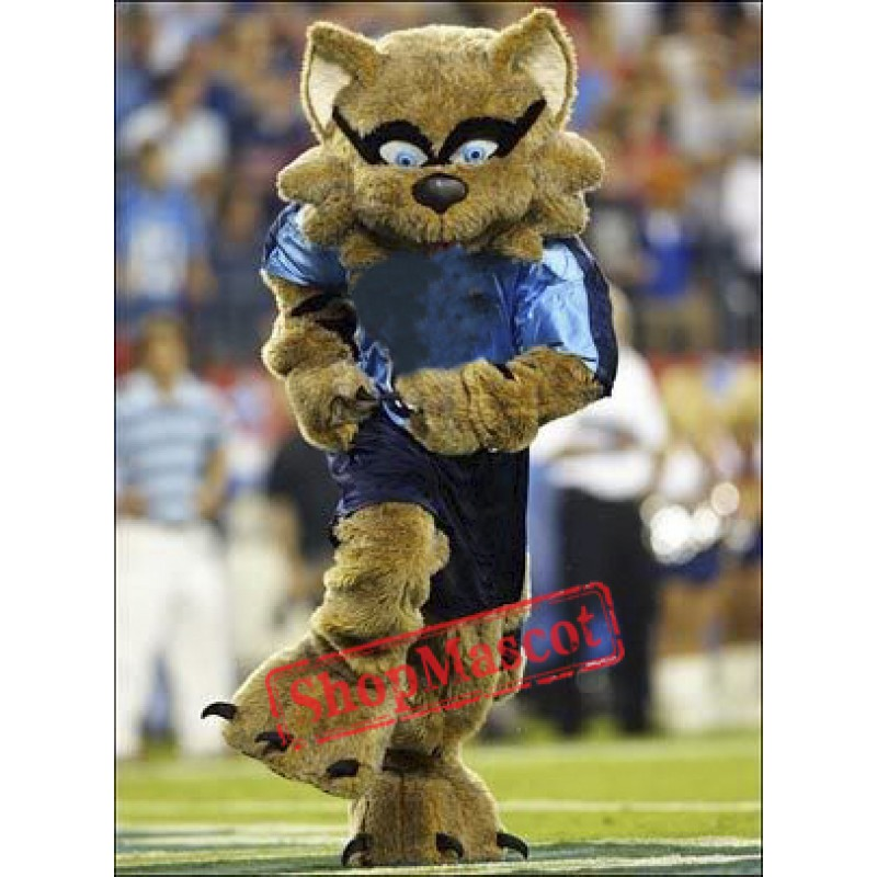 College Raccoon Mascot Costume
