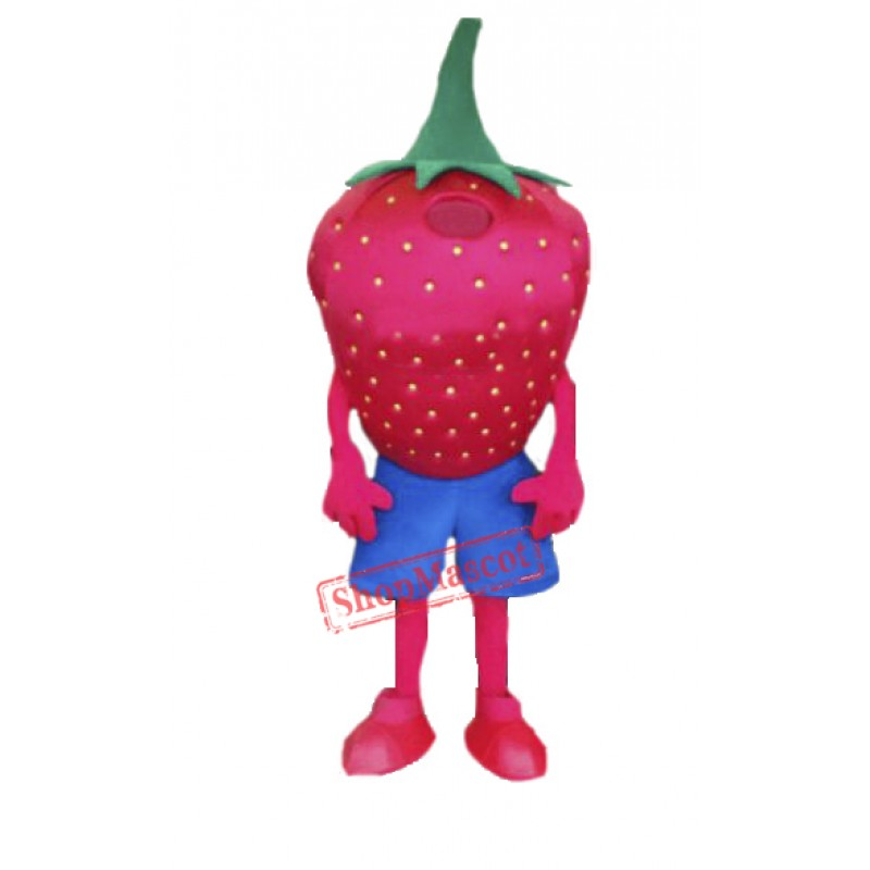 High Quality Strawberry Mascot Costume