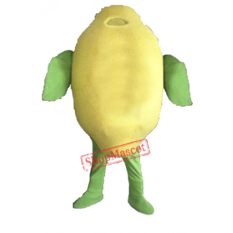 High Quality Lemon Mascot Costume Free Shipping
