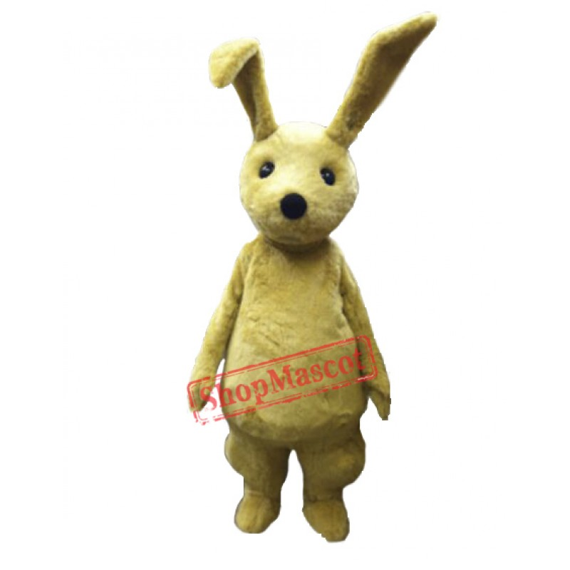 Young Rabbit Mascot Costume