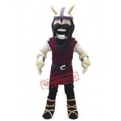High School Viking Mascot Costume