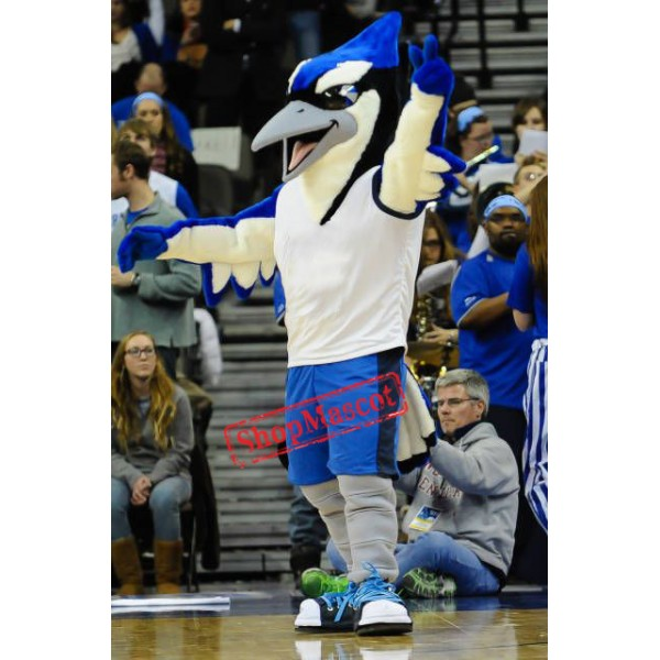 Sport Blue & Black Bird Mascot Costume