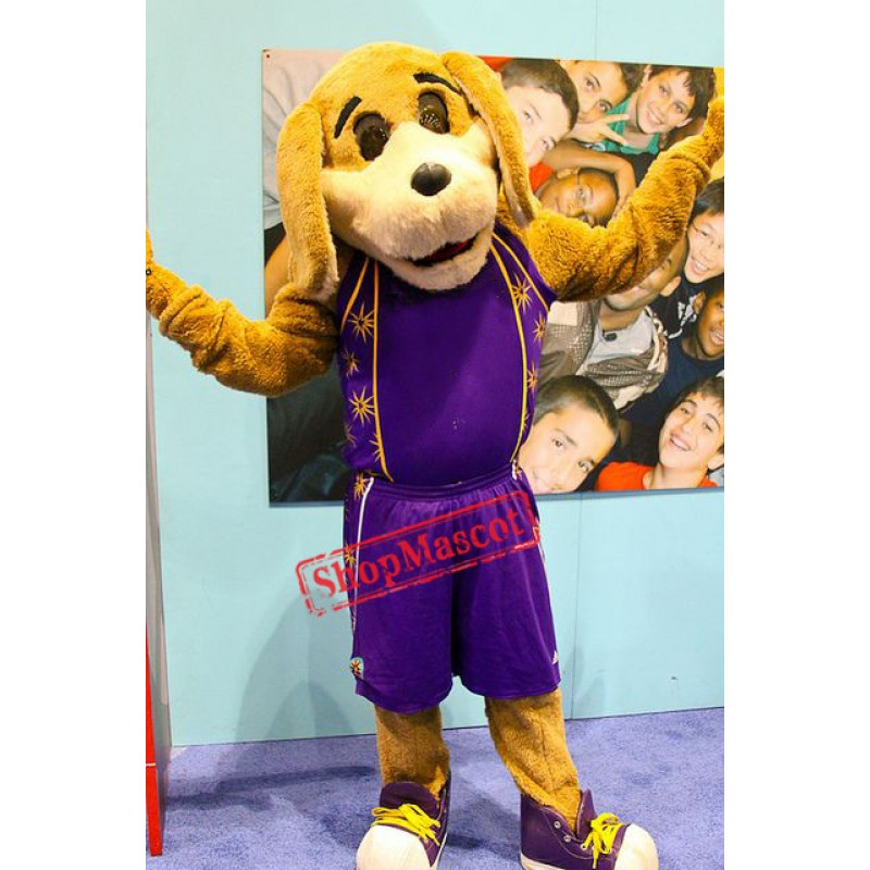 College Sport Dog Mascot Costume