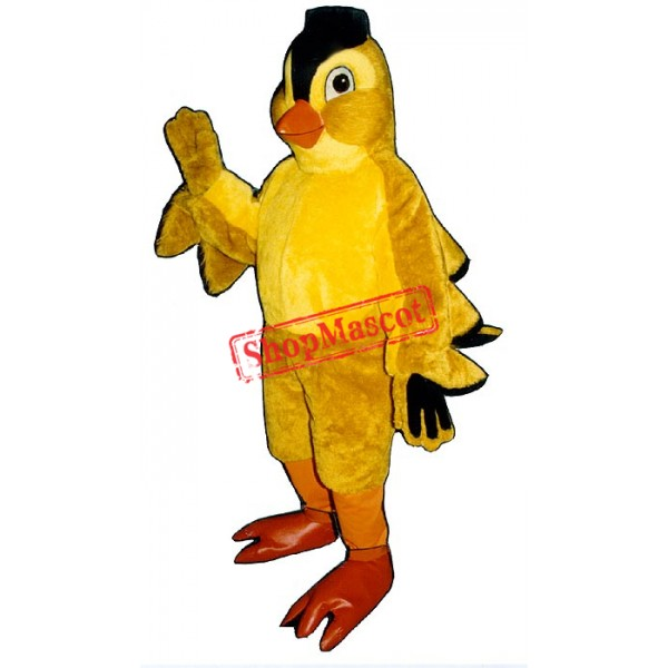 Finch Bird Mascot Costume