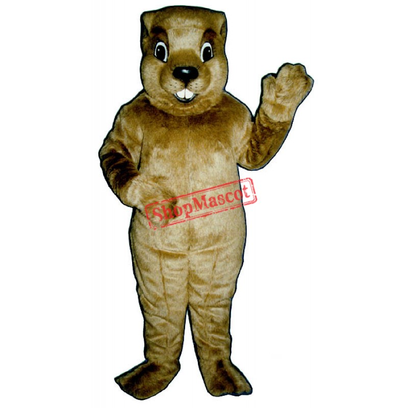 Groundhog Mascot Costume