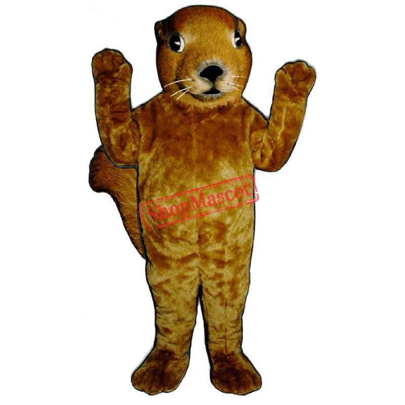 Realistic Squirrel Mascot Costume