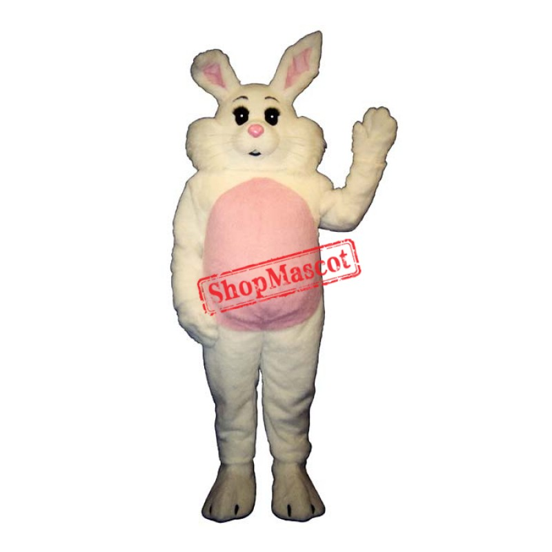 Willy Rabbit Mascot Costume