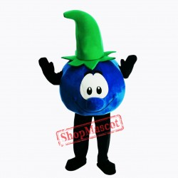 Bobby Blueberry Lightweight Mascot Costume