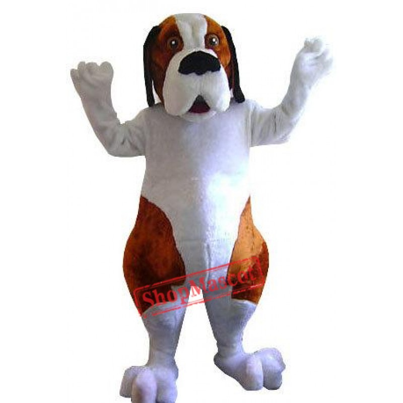 Saint Bernard Dog Mascot Costume