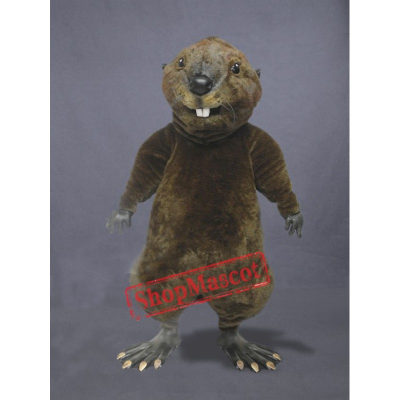High Quality Otter Mascot Costume