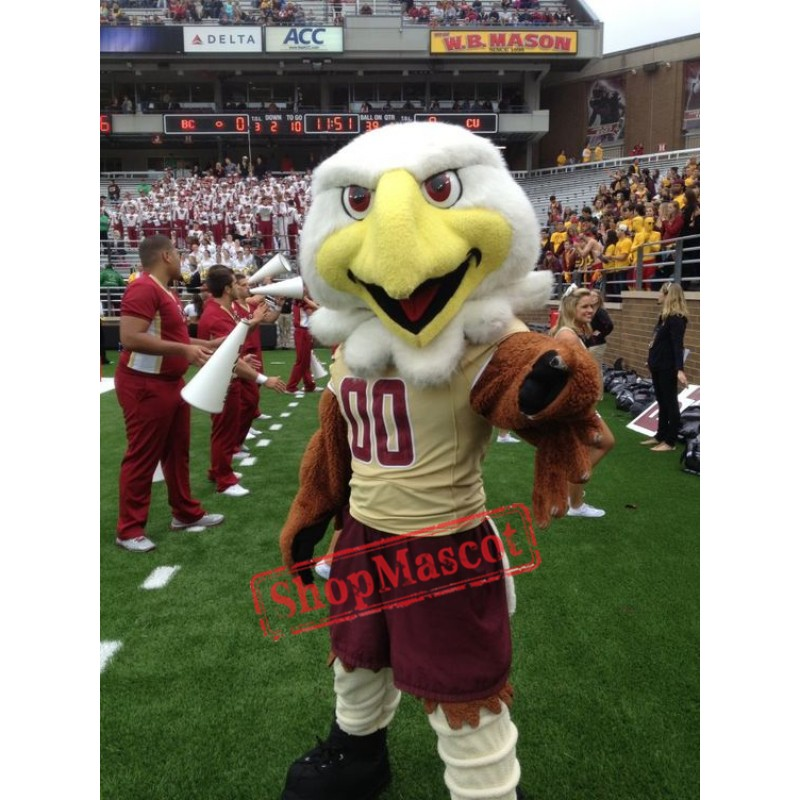 College Eagles Mascot Costume