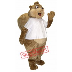 High Quality Cute Squirrel Mascot Costume