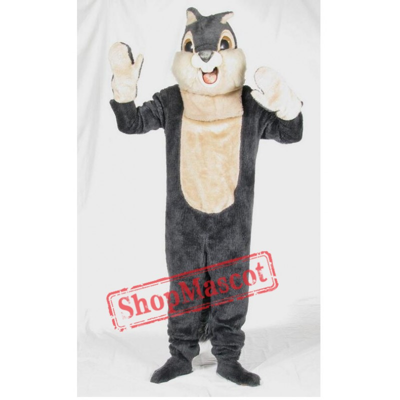 Cute Grey Squirrel Mascot Costume