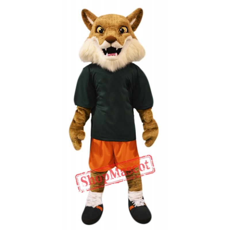 High Quality Coyote Mascot Costume