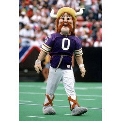Popular Football Sport Viking Mascot Costume