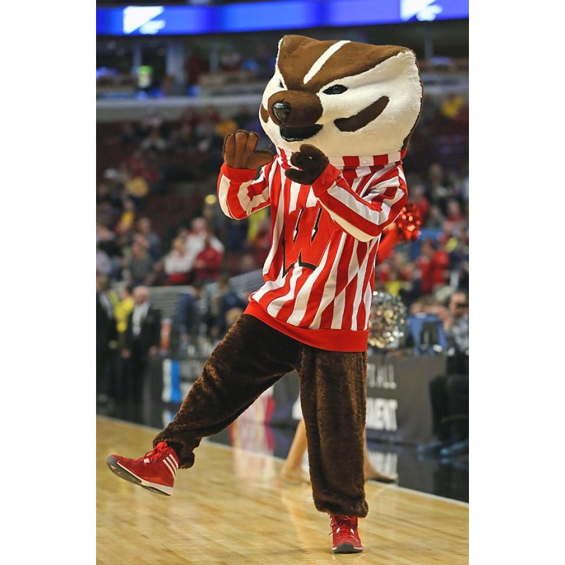 Wisconsin Badgers Mascot Costume