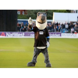Sussex Cricket Gray Shark Mascot Costume