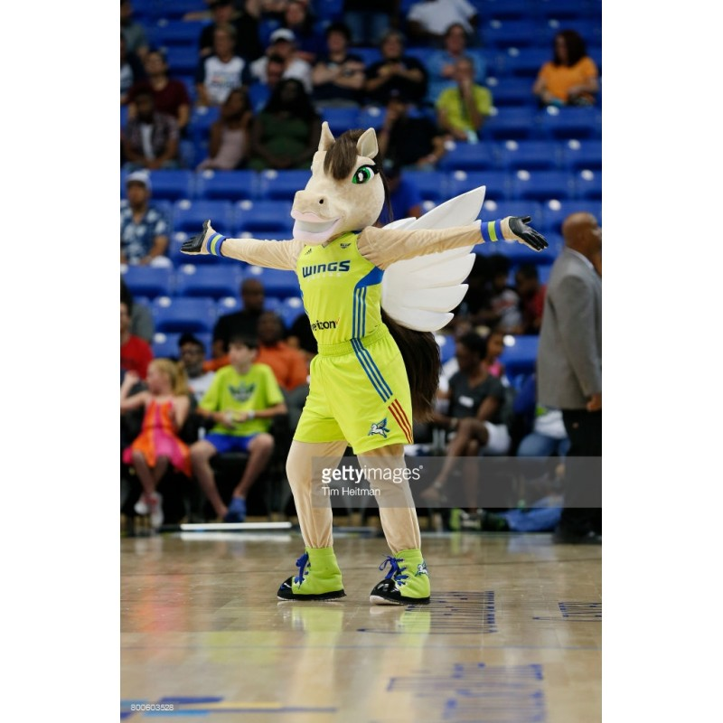 The Dallas Wings Mascot Costume