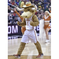 The University of Texas at Austin Mascot Costume