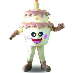 Birthday Cake Mascot Costume