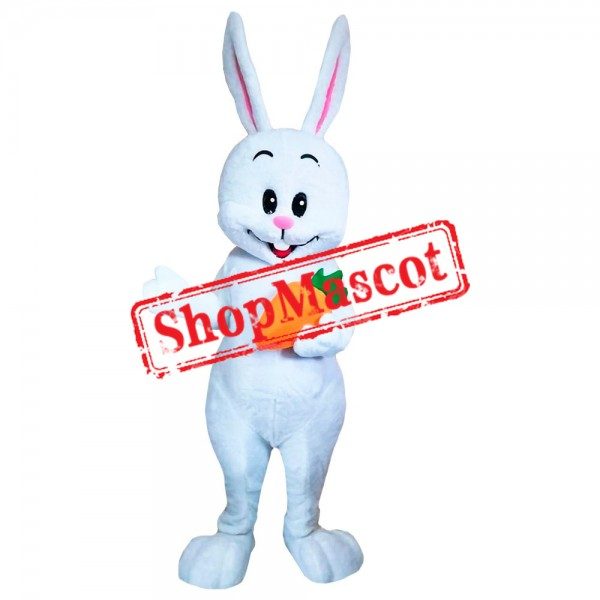 Bunny With Carrot Mascot Costume