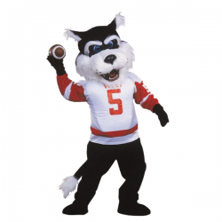 Cute Bearcat Mascot Costume Free Shipping