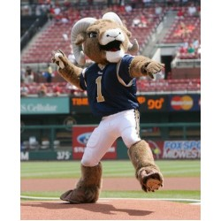 St.Louis Rams Sports School Mascot Costume